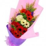 Hand Bouquet Gerbera