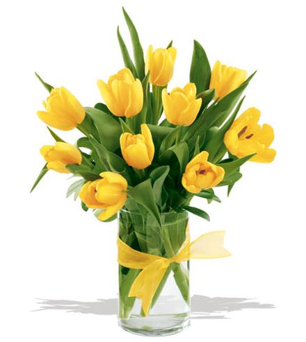 Kado Bunga Untuk Ibu