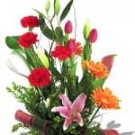 Tips dalam Memilih dan Merangkai Bunga