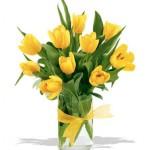 Bunga Tulip : Informasi Berbagai Jenis Bunga Tulip di Jakarta