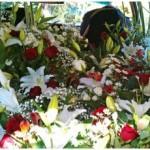 Tips dan Cara Membawa Dan Mengangkut Bunga Potong Segar