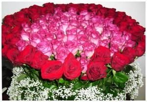rangkaian-100-kuntum-mawar