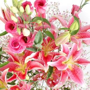 bunga-lily-casablanca-rose-pink