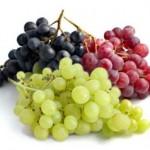 Parcel Buah Anggur Solusi Tepat Ungkapan Semoga Lekas Sembuh