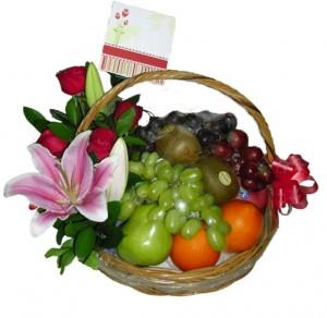 parcel buah 06
