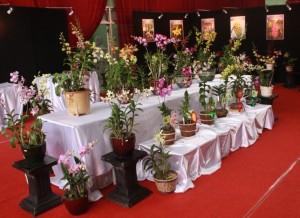 florist toko bunga di Jakarta Barat
