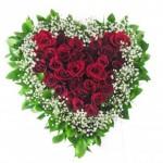 Tips dan Panduan Bagi Pria Dalam Memberikan Bunga Kepada Wanita