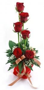 mawar-merah-spesial-hari-valentine