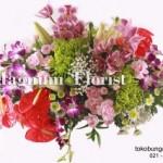 Berbagai Jenis Bunga Eksotis Yang Cantik Dan Unik