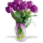 Arti Dan Cara Merawat Bunga Tulip Ungu