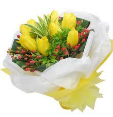 Jual Bunga Tulip di Jakarta