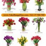 Jual Bunga Tulip Jakarta