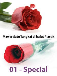 Mawar-Merah-Valentine-2014