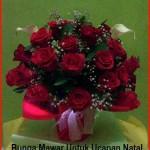Rangkaian Bunga Untuk Natal
