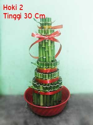 Pohon-Bambu-Hoki-Imlek-2
