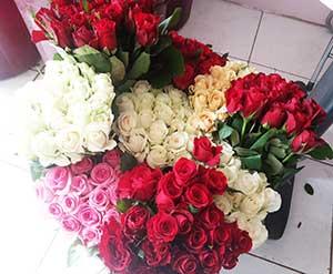 Toko Bunga Valentine Bunga Mawar Merah
