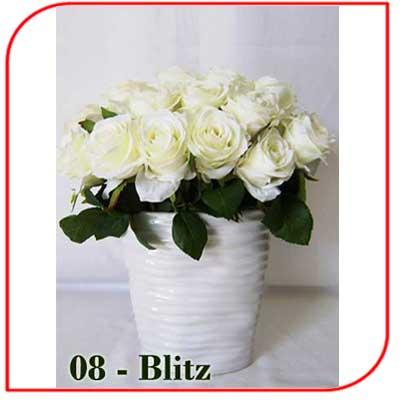 Buket Bunga Meja 08-Blitz