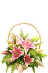 rangkaian-bunga-lily-by-tokobungahias.com