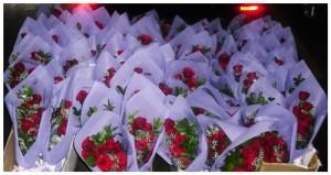 buket-mawar-segar-100