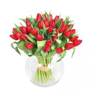 rangkaian-bunga-tulip-merah-spesial-valentine-2013