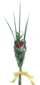 ado-Valentine-setangkai-mawar-merah