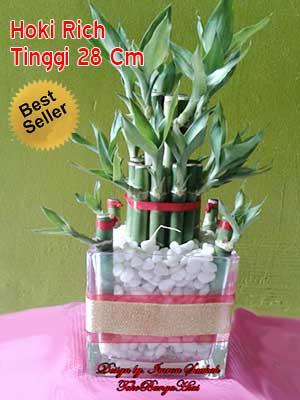 Jual Bambu-Hoki Imlek
