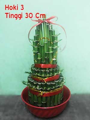 Pohon-Bambu-Rejeki-Imlek-3